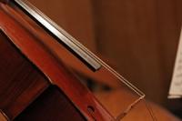 cello_aud