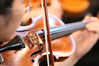 Violinist sw13 copy