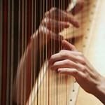 2015 Berkshire Symphony Student Soloist - Anna Deloi